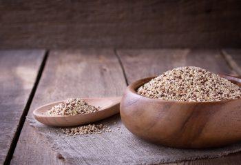 Statt Fleisch und Fisch: Pflanzliche Alternativen für lebenswichtige Nährstoffe